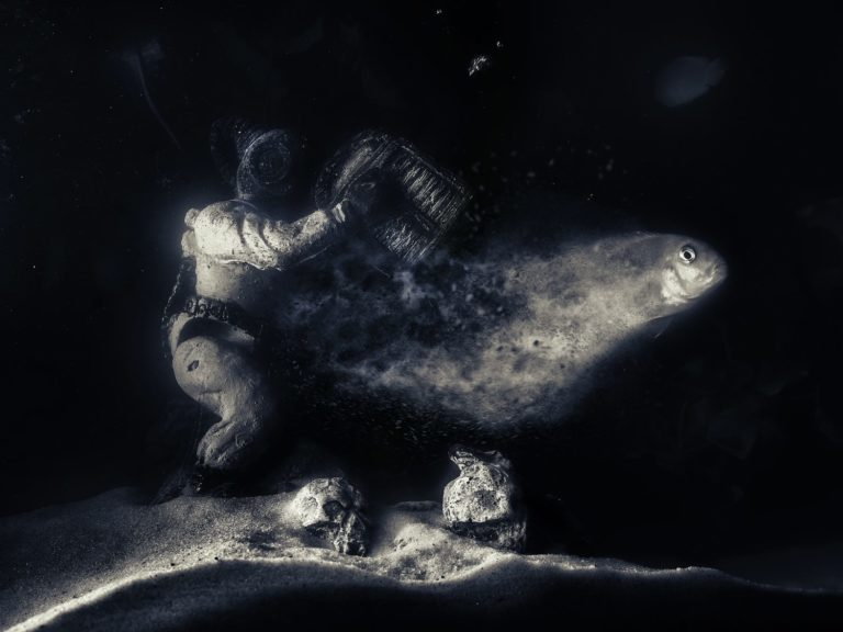 Nemo's soul